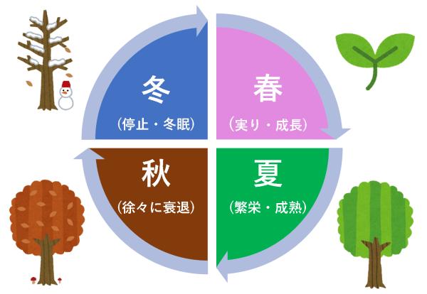 自然のサイクル:木もこれに沿って成長している